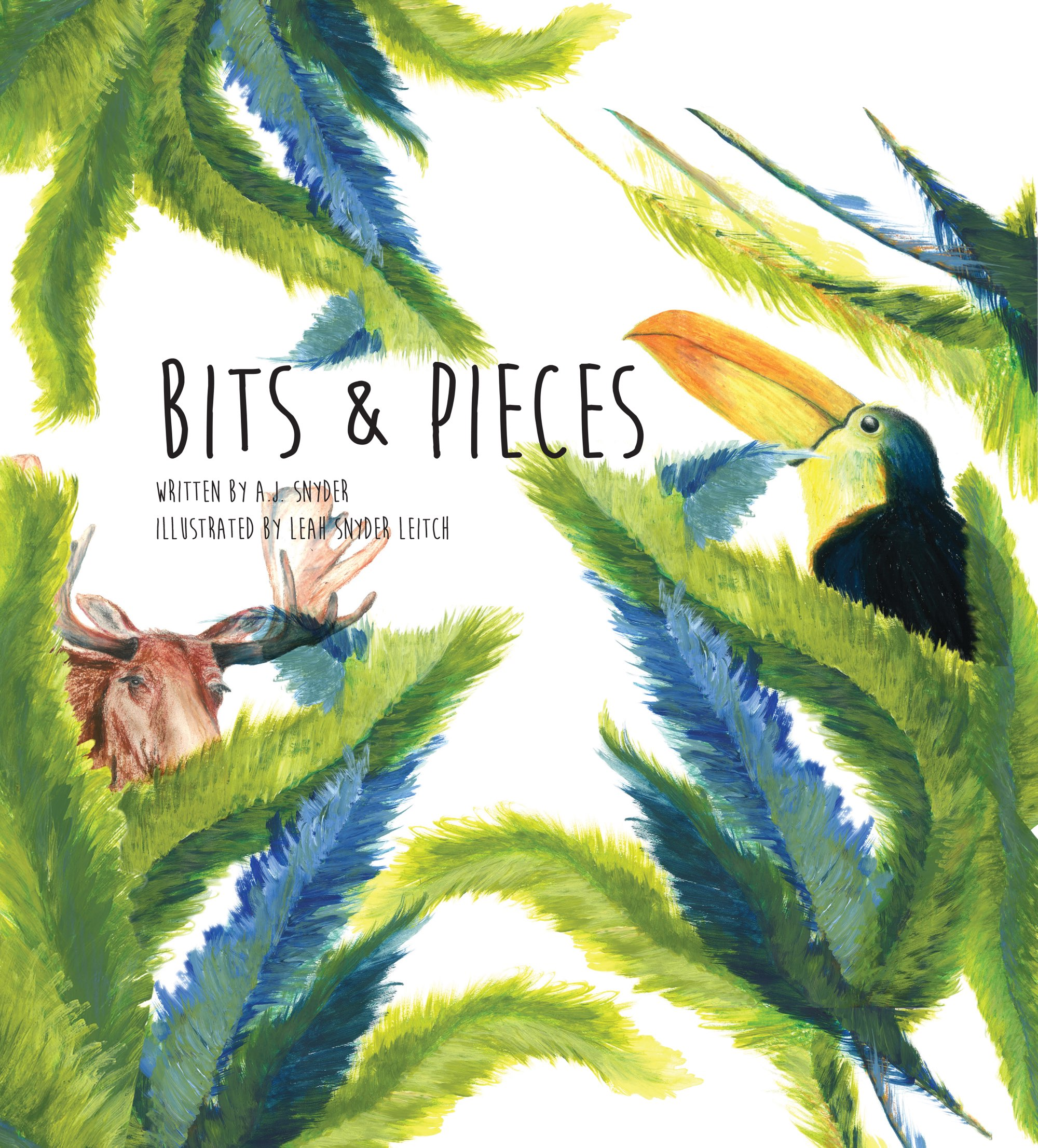 Bits & Pieces,by A.J. Snyder and illustrated by Leah Snyder Leitch.