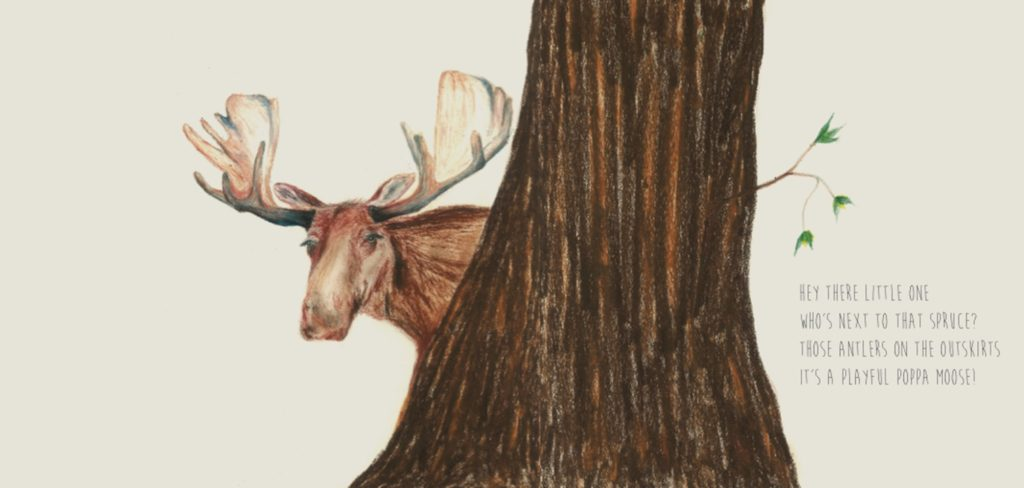 Moose from Bits & Pieces - Children's Picture Book whimsical coloring book from Sweetgrass Books