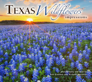 Cover_Texas Wildflowers Impressions