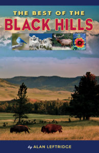 Best of the Black Hills Cover