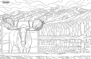 Bull Moose at the Swan Range - Montana Coloring Book
